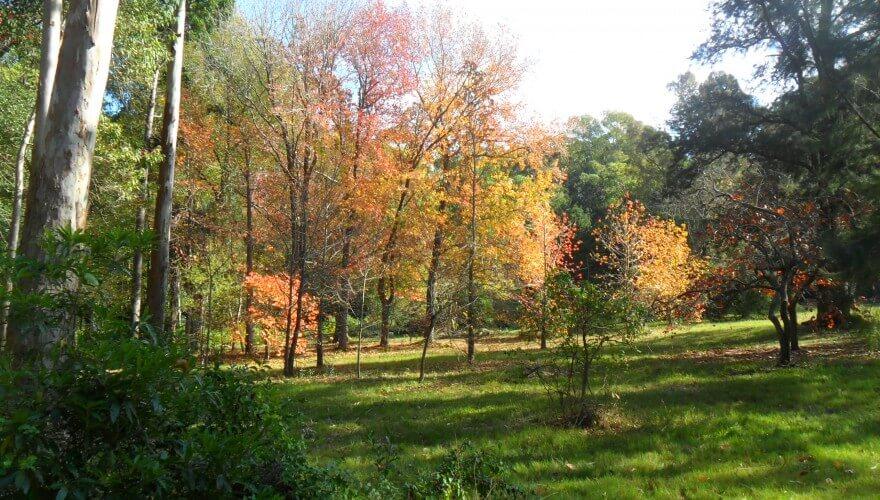 Punta del Este em junho: Arboretum Lussich