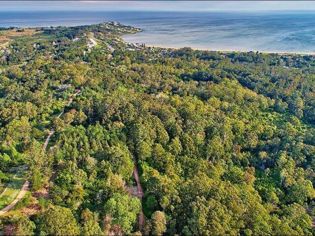 Parques em Punta del Este: parque Arboretum Lussich